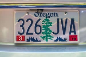 What is the vehicle registration number and where to find it.